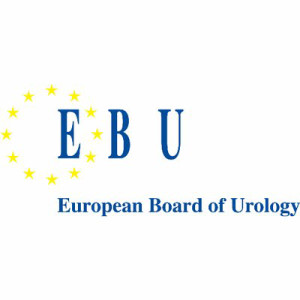 FEBU Fellow of the European Board Of Urology Belgium